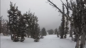 Lake Tahoe weather: Storm could bring 7 inches of snow above 7,000 feet